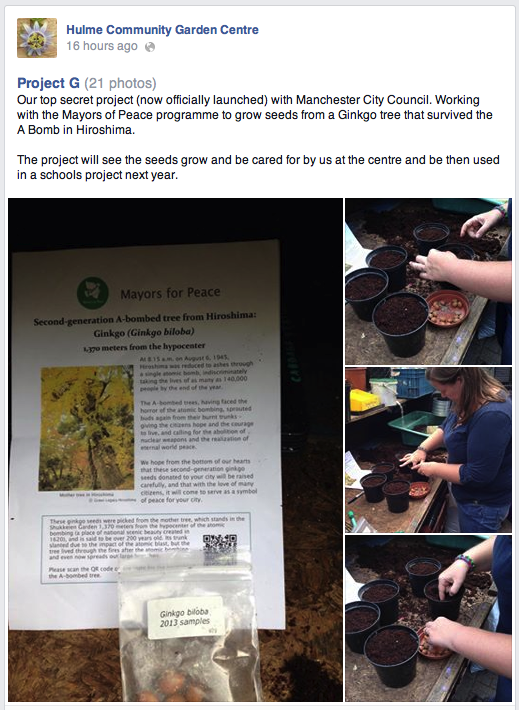 "Hulme Community Garden Centre Facebook Page announces ""Project G"" - nurturing gingko seedlings taken from a-bomb-surviving gingko  trees in Hiroshima"